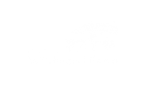 Wildwood Farm - Motus Creative Group Client